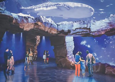 Wanda Commercial – Nanchang Aquarium